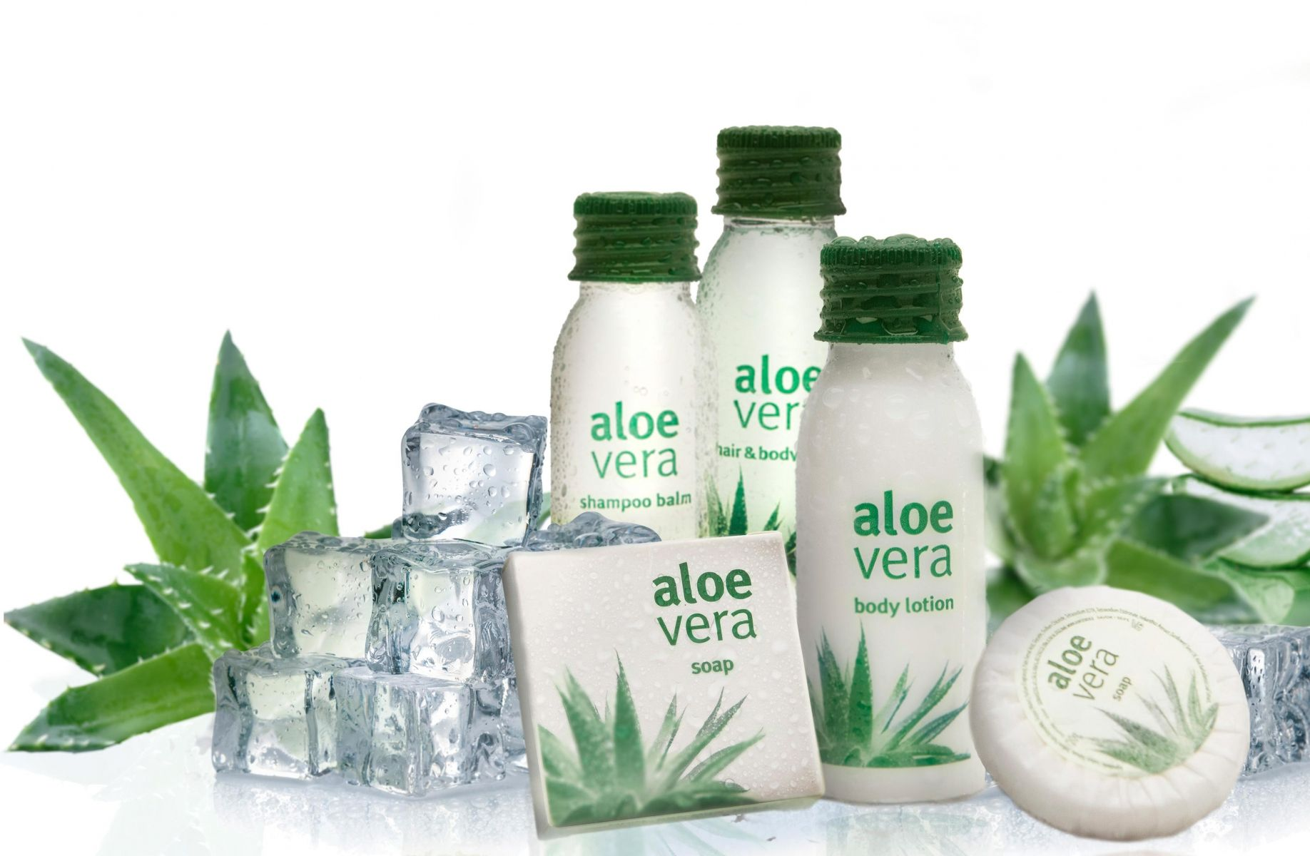 collection Aloe Vera